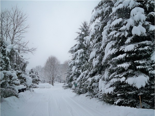 Entrance to the Graham Creek Heights Subdivision from Creek Street in the winter of 2009