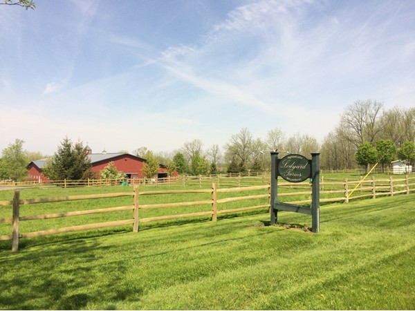 King Ferry is rich in agriculture, including a Morgan horse farm