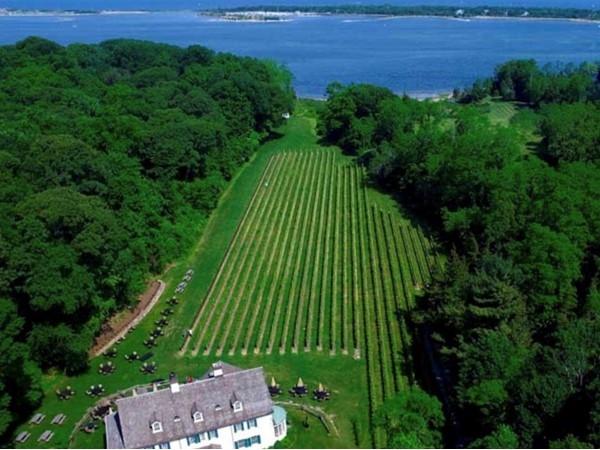 Harmony Vineyards at Head of the Harbor, NY