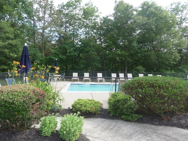 Pool area at Silver Woods in Islandia