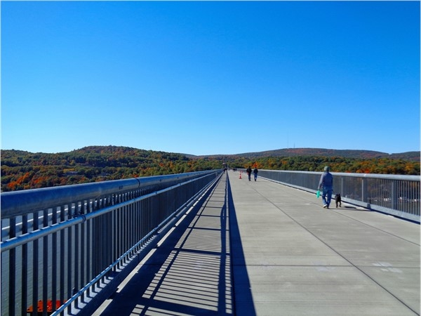 "Walkway over the Hudson is ""pet friendly"" and a great way to enjoy the fresh air"