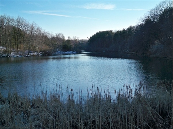 One of the many ponds in Durand Eastman Park