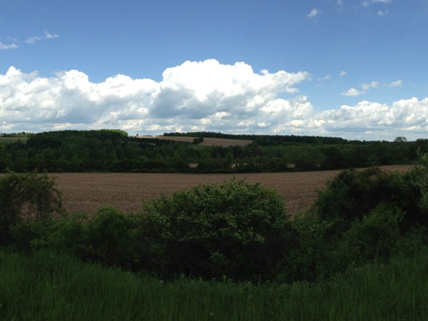 Sunshine, rolling hills, and blue skies grace the farm land in Trumansburg NY
