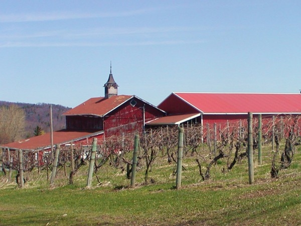 Wine country!