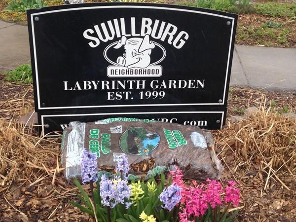 Community garden in the heart of Swillburg
