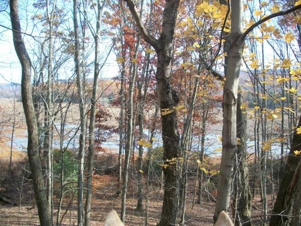 Fall trail riding at Bashakill!