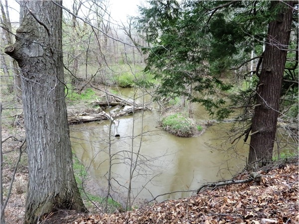 Irondequoit Creek as it winds its way through Perinton near Countryside Road