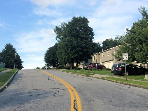 Village of Monroe, Windgate Woods