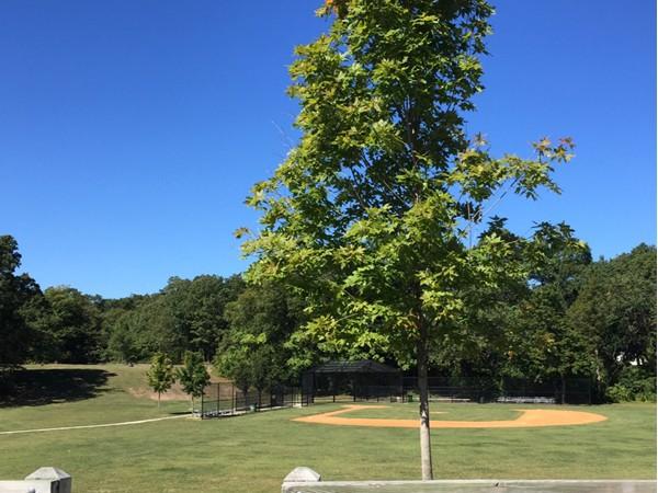 Sunshine Acres Park offers baseball, playground, walking, etc.