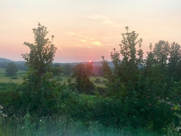 Beautiful summer sunset at the Angry Orchard