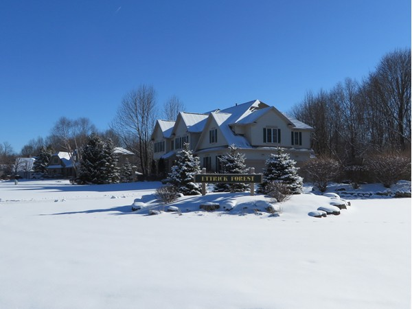 Very exclusive Ettrick Forest subdivision in Penfield off Scribner Road