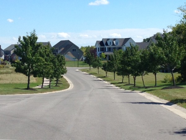 Tree lined neighborhood streets of Lakewood Meadows