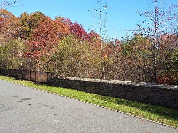 Park area in Rossville