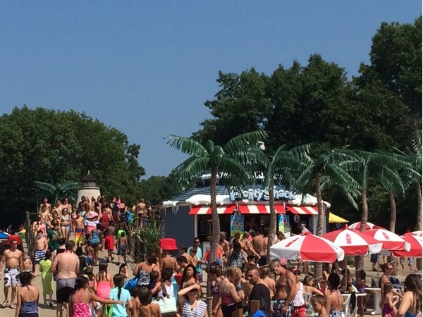 Full house at Splashdown