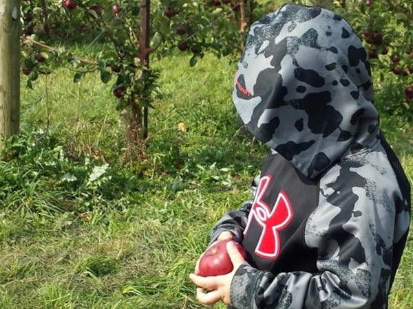 Great day for apple picking at Beak and Skiff Apple Orchard