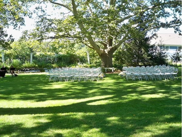 Wedding ceremony under the large Sycamore tree on the back lawn of the Senator's Mansion