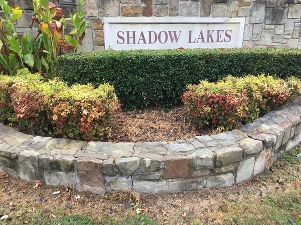 Shadow Lakes North in Allen, TX
