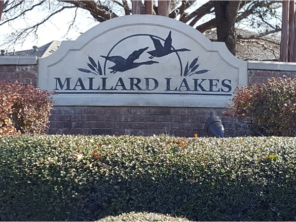 Welcome to Mallard Lakes in McKinney