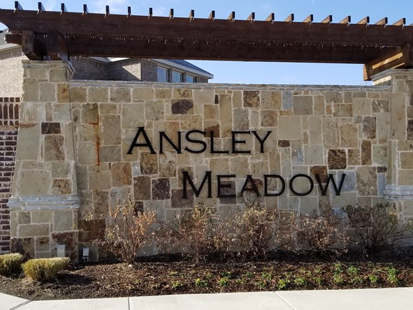 Welcome To Ainsly Meadow