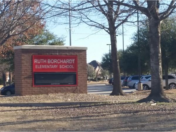 Elementary school in neighborhood. Frisco ISD