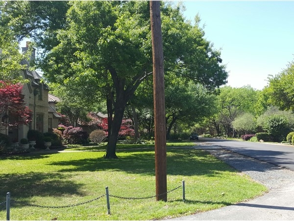 Lush greenery and scenic tree lined street settings are common in Preston Hollow