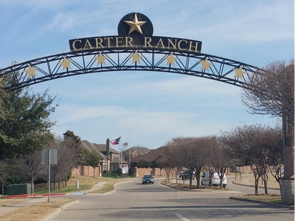 Welcome to Carter Ranch