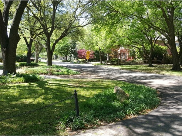 Lush greenery and scenic tree lined street settings are signature to Preston Hollow